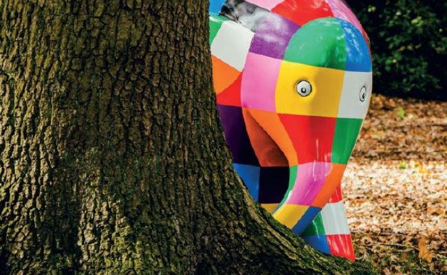 Things to do with the Family in Plymouth – Elmer's Big Parade